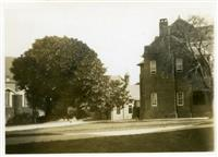 Fig tree, dining hall and School House c1940
